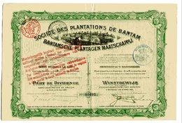 Société Des PLANTATIONS De BANTAM - Asie
