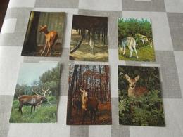 LOT Van 245 Postkaarten: HERTEN, REEËN, REEBOKKEN - ALGEMEEN - Postcards