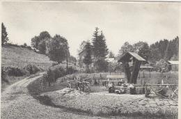 Belgique - Lavacherie Sur Ourthe - Potale - N. D. De Banneux - Sainte-Ode