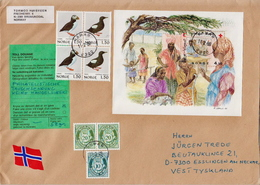 Postal History Cover: Norway Cover With SS - Red Cross