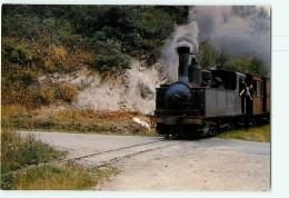Chemins De Fer Régionaux Et Urbains N° 02 - Tramways De La CORREZE - Train Vapeur , Loco 030T - TTBE - CPM - 2 Scans - Tramways