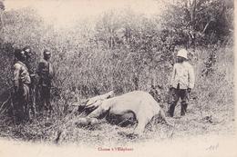 CONGO   Chasse à L'ELEPHANT ( Plan Animé ) - Congo Français - Autres