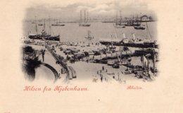 [DC7724] CPA - DANIMARCA - HILSEN FRA KOBENHAVN - Non Viaggiata Primi '900 - Old Postcard - Danimarca