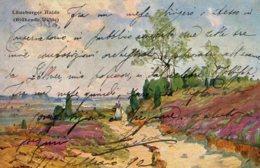 [DC7730] CPA - LUNEBURGER HAIDE (BLUHENDFE HAIDE) - Viaggiata 1903 - Old Postcard - Lüneburger Heide