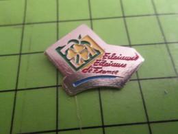 """411g Pin's Pins / Beau Et Rare / THEME : ASSOCIATIONS : Ils Sont """"au Courant"""" ECLAIREURS ECLAIREUSES DE FRANCE SCOUTISME - Associations"""