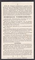 Molenbeek - Wersbeek - Remigius Timmermans 1857 - 1930 - Bekkevoort