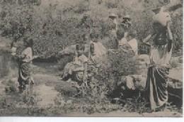 GUATEMALA  0136  AORILLAS  DEL RIO  DE LOS  PLATANOS - Guatemala