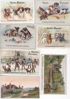 TRES JOLI LOT DE 24 CHROMOS ROYAL WINDSOR DONT 3 DOUBLES / REGENERATEUR DE CHEVEUX / A VOIR - Altri