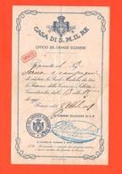 Savoia Reali Scuderie In Roma 1911 Biglietto Di Ingresso Ufficio Grande Scudiere - Tickets D'entrée