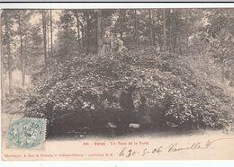 Cp , 51 , VERZY , Un Faux Dans La Forêt - Verzy