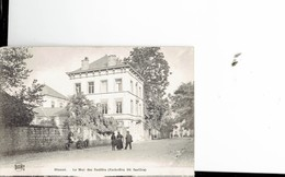 BELGIUM  - VINTAGE POSTCARDS- DINANT -LE MUR DES FUSILLES LE 23.4.1914 PAR LES ORDES SAXONNES - ANIMEE -NOT SHINING- PAS - Belgique