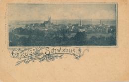 Poland - Gruss Aus Schwiebus - Polen