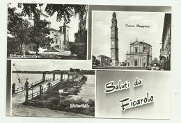 SALUTI DA FICAROLO - VEDUTE - NV  FG - Rovigo