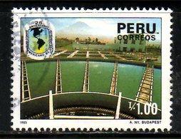 PEROU. N°837 Oblitéré De 1986. Banque Interaméricaine De Développement. - Peru
