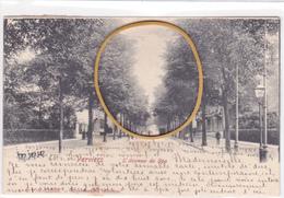 """VERVIERS ACP """"Avenue De Spa   Circulée En 1902  Voir Scans - Verviers"""