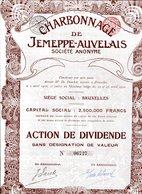 CHARBONNAGES De JEMEPPE-AUVELAIS - Mines