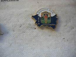 Pin's Rhénanie Ruhr Tyrol,  AFFA 19eme Section - Militaria