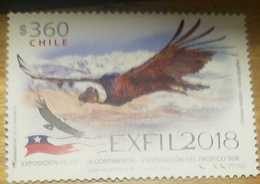 O) 2018 CHILE, BIRD OF PREY - ANDEAN CONDOR-VULTURGRYPHUS-EXFIL 2018-CONTINENTAL PHILATELIC EXHIBITION-V EXHIBITION OF T - Chile