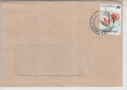 Iirland  Airmail Cover To Pakistan, Animals    (Red-2288) - Namibia (1990- ...)