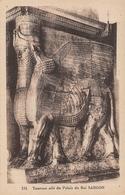 Palais De Sargon Archéologie - Irak
