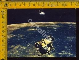 Sapzio Apollo XI (forellino) - Astronomia