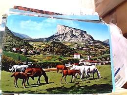 PIETRA BISMANTOVA CAVALLI HORSES  VB1970   GW4830 - Reggio Nell'Emilia