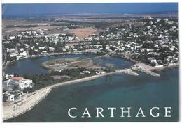 Tunisia Cartagine Carthage Viaggiata 1996 - Tunisia