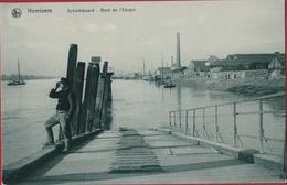 Hemiksem Hemixem Scheldeboord Bord De L' Escaut Steenbakkerij Steenbakkerijen 1909 ? (In Zeer Goede Staat) - Hemiksem