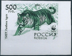 B3816 Russia Rossija Fauna Animal Tiger (500 Rubel) Organization Colour Proof - Abarten & Kuriositäten