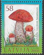 Latvia 2008 Forest Flora 58s Good/fine Used [38/31508/ND] - Latvia