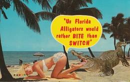 "Pin-Ups ""Us Florida Alligators Would Rater Bite Than Switch"" - Pin-Ups"