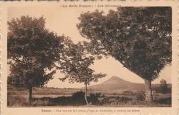 Haute-loire : TENCE : Une Vue Sur Le Lizieux à Travers Les Arbres - Sonstige Gemeinden
