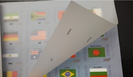 MALI 1999 ¤ FLAGS FLAG DRAPEAUX DRAPEAU ¤ RARE BKLT ALL 100 VALUES ¤ RARE -  MNH ** - Stamps