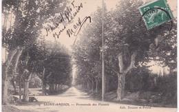 13 Bouches-du-Rhône - SAINT-ANDIOL - Promenade Des Platanes - 1908 - France