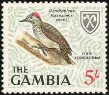 Gambie. The Gambia. 1966.   Pic Cardinal (Dendropicos Fuscescens)  ** - Climbing Birds