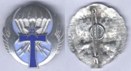 Insigne De La Compagnie De Transmission De La 25e Division Parachutiste ( étoile Argentée ) - Army