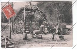 CPA 89 - L'exploitation Des Bois En Bourgogne - Une Loge De Bûcherons Dans La Fôret D'Othe à Sormery - Francia