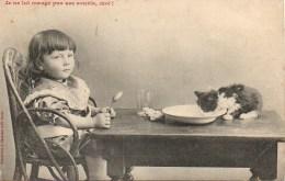 CHAT  Je Ne Lui Mange Pas Ses Souris , Moi - Cats