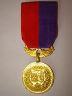 """Médaille """" Fédération Des Sociétés Musicales Du Nord Et Du Pas De Calais - Other"""