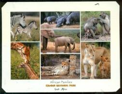 South Africa Postcard 2005 Kruger National Park - South Africa