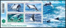 TAAF 2014 - Yv. F710 (710 à 713) ** SUP   - Feuillet Dauphin De Commerson (4 Val.)  ..Réf.TAF20928 - Terres Australes Et Antarctiques Françaises (TAAF)