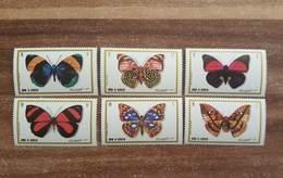 Umm Al Quwain. Insects. Butterflies - Butterflies