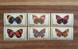 Umm Al Quwain. Insects. Butterflies - Vlinders