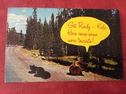 USA Great Smoky Mountains National Park - Smokey Mountains