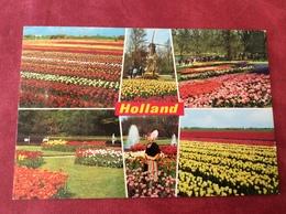 Nederland Holland Pays-Bas In Bloementooi - Bloemen