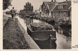AALSMEER: Transport Van Bloemen Naar De Veiling - Aalsmeer