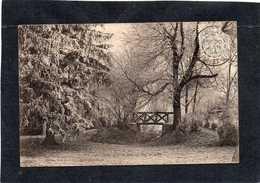 Milly La Forêt  (91) - Effet De Givre Dans Un Parc   Le Pont  CPA  Année 1904  Edit Vve Hamelin - Milly La Foret