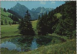 Grimmialp-Schwenden (Diemtigtal) Blauseeli, Rothorn-Spillgerten - Photo: Arthur Baur - BE Berne