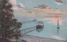 Carte 1910 CLEARWATER / FLA . - Clearwater