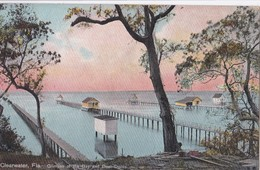 Carte 1910 CLEARWATER / FLA ./ GLIMPSE OF THE BAY AND BOAT DOCKS - Clearwater